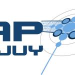 logo_ipap_2010-08-31-a